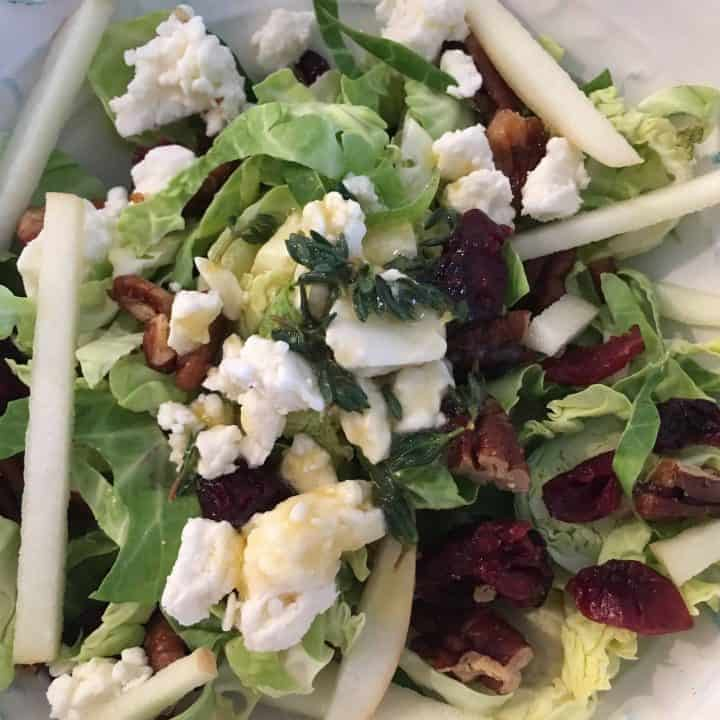 Shaved Brussels Sprout, Apple, and Cranberry Salad